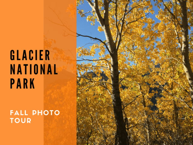 Glacier National Park Fall Photo Tour @montanahappy.com