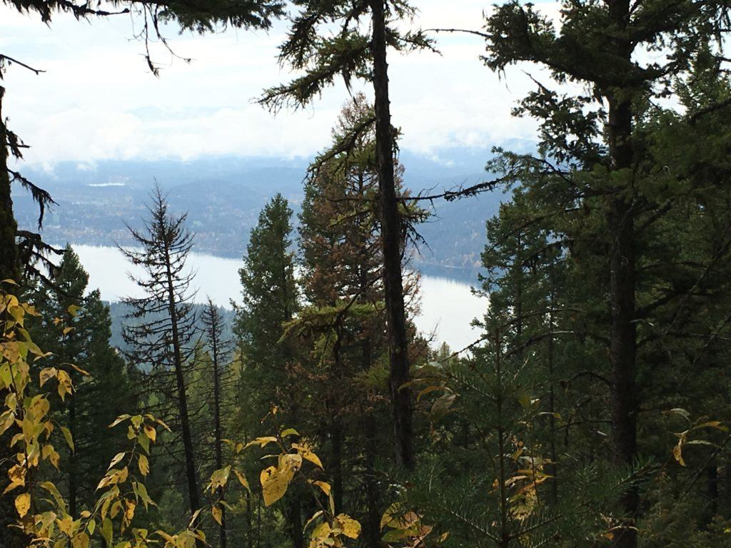 Overlook of Whitefish Lake in Whitefish Montana