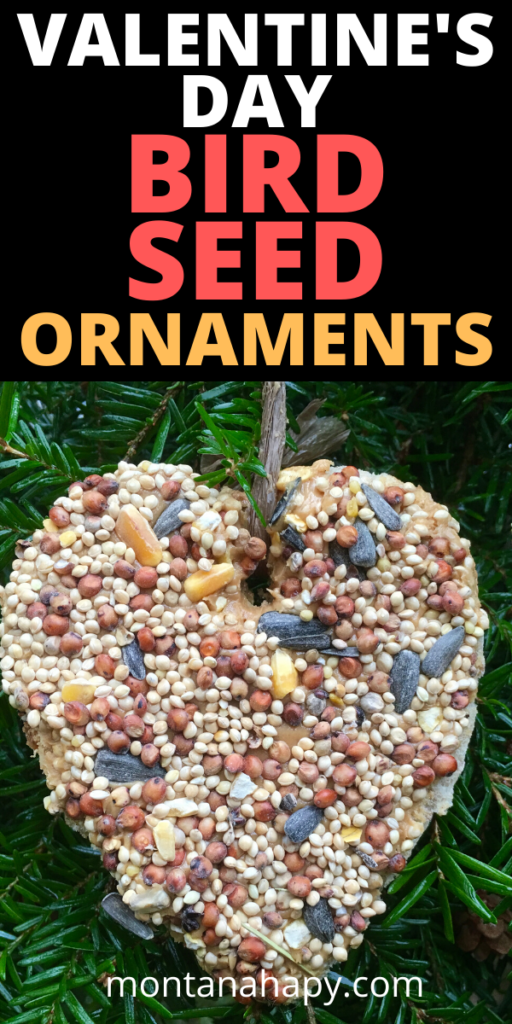 Valentine's Day Bird Seed Ornaments