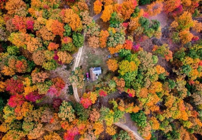 Ariel photograph of cabin in the middle of the woods surrounded by fall trees
