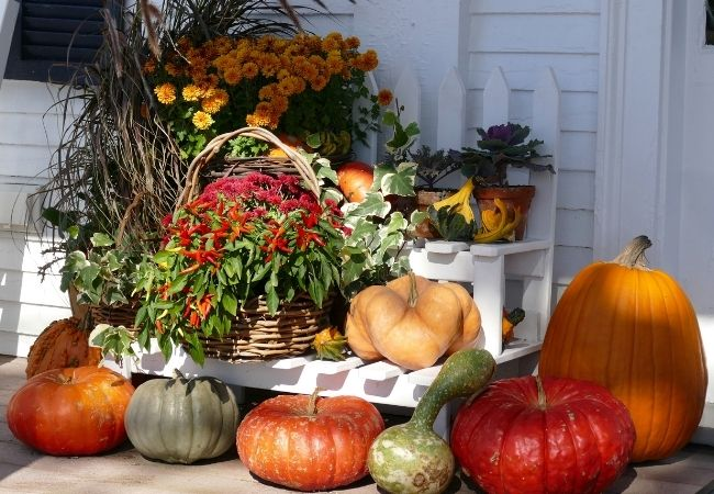 Front porch filled with pumpkins, fall flowers