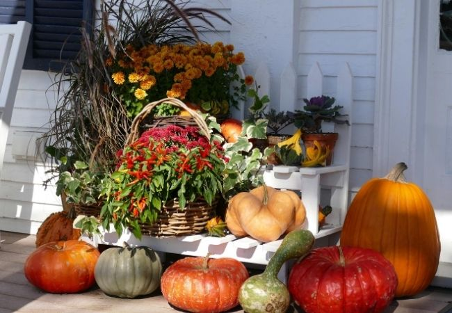Front Porch Decorated with Pumpkins, Grasses and Fall Flowers