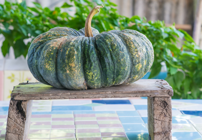Simple Ways to Use Pumpkins and Gourds for Fall Decorating