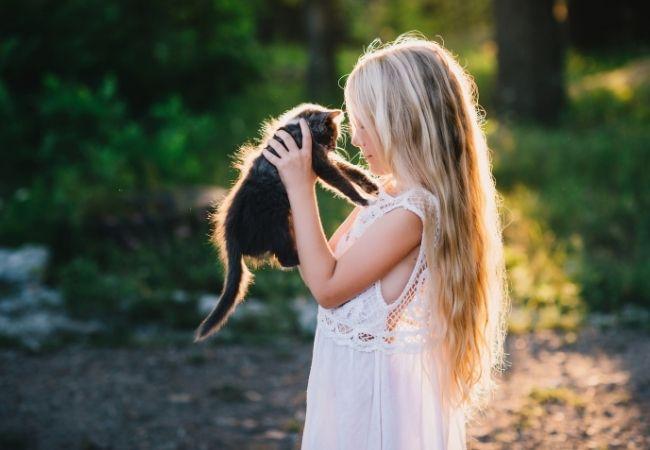 Little girl holding up kitten in sunlight