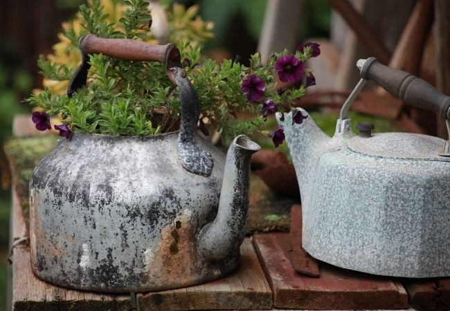 Two rustic tea kettles on a bench with flowers planted in them