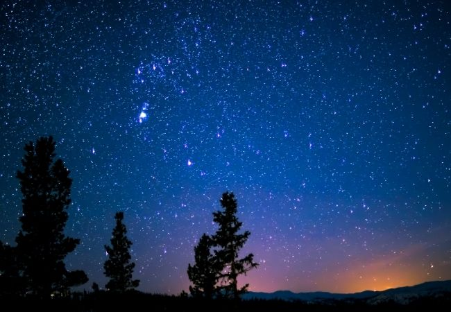 Night sky with trees and stars - Hygge Quotes