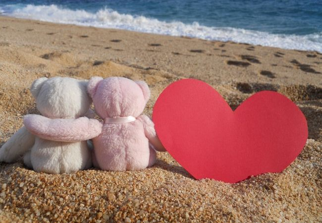Valentines Week 2020 - Teddy Day