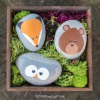 Rock Painting Woodland Animals – Sustain My Craft Habit