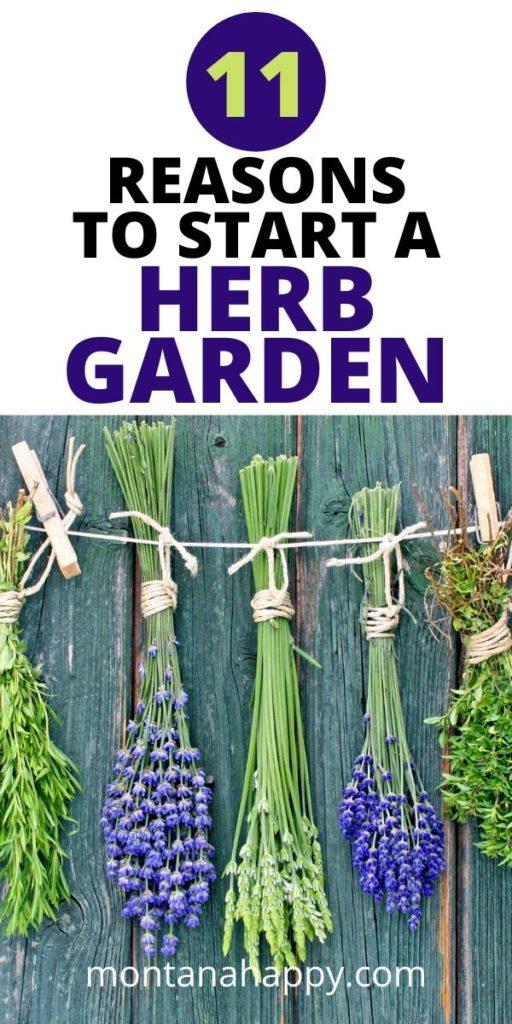 11 Reasons to Start a Herb Garden