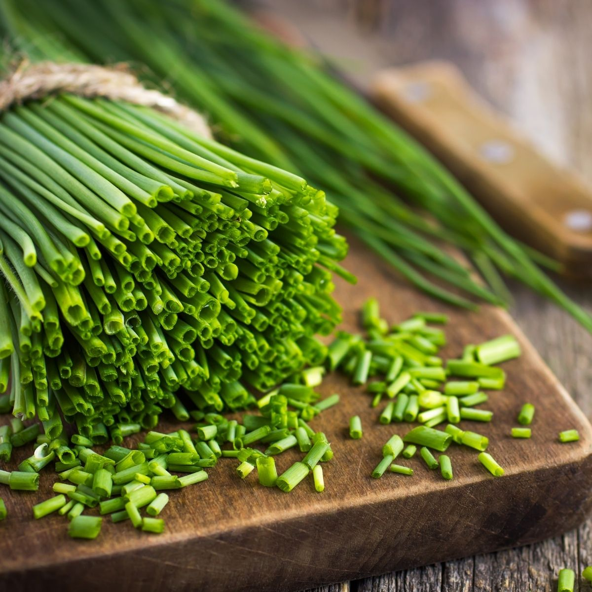 How to Grow Chives - Chives on a cutting board being minced