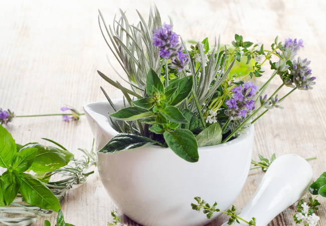 Fragrant Herbs