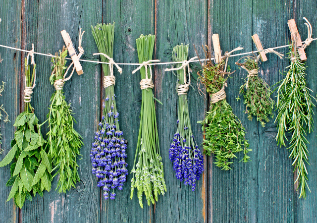 9 Reasons to Grow Herbs