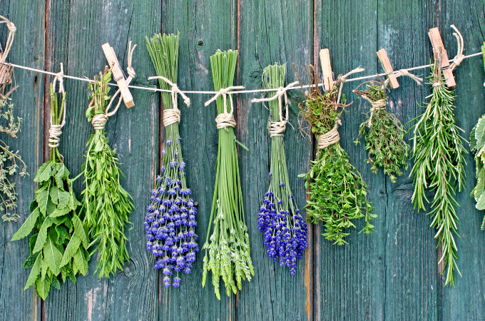 9 Reasons to Grow Herbs