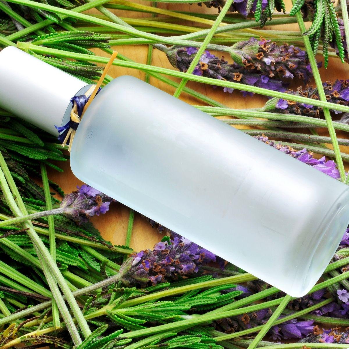 DIY Lavender Linen Spray Recipe on lavender sprigs
