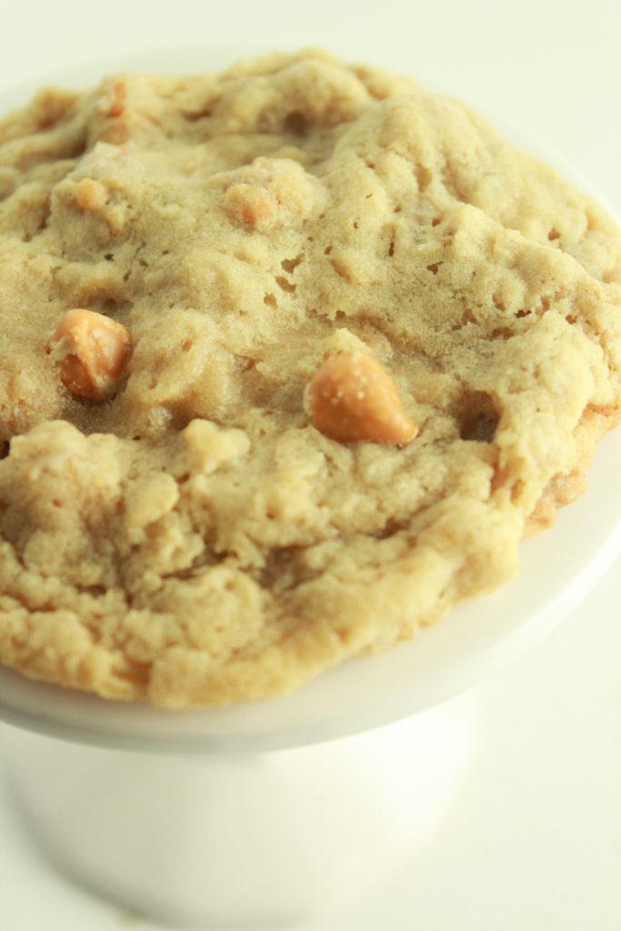 Soft Oatmeal Scotchie Cookies
