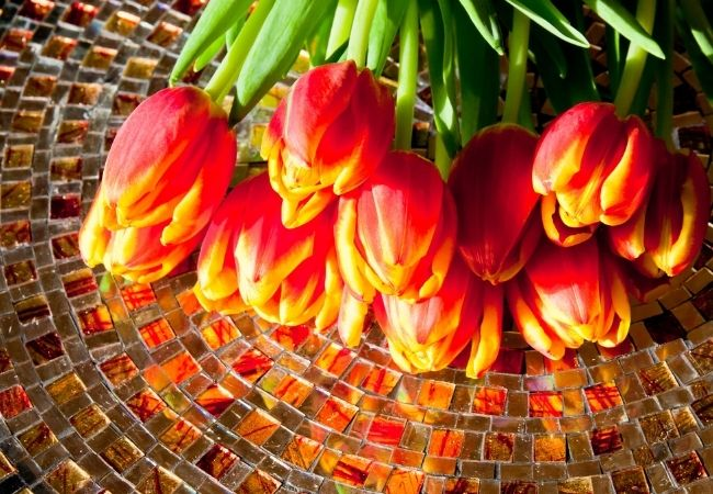 close-up of glass mosaic table with red and yellow tulips