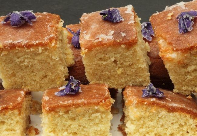 Chocolate Fondue Dippers - Cake squares