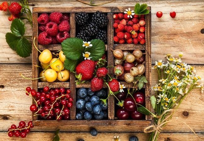 Chocolate Fruit Dippers - Berries