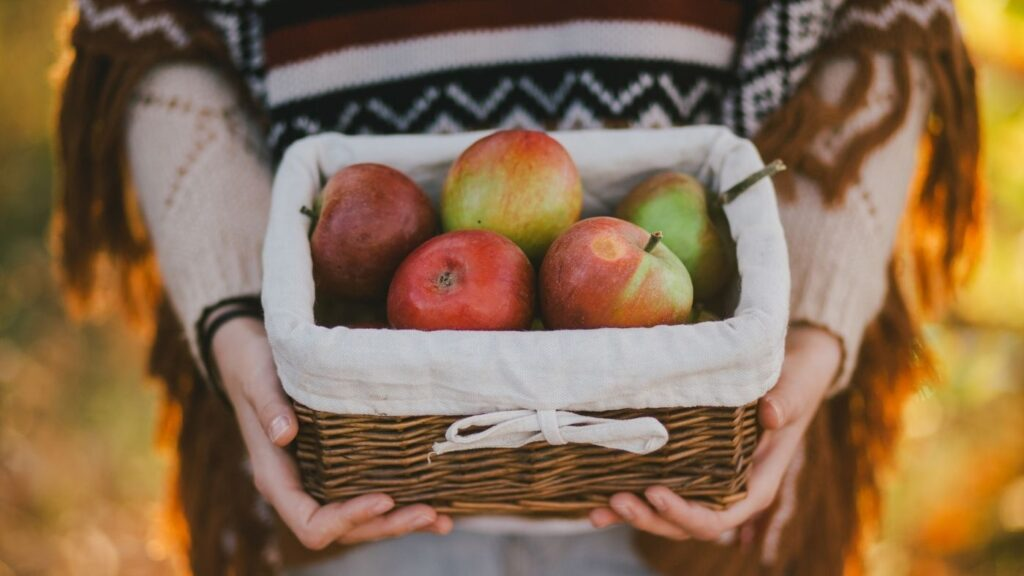 31 Ways to Hygge in the Fall - Woman in a shawl holding a basket of apples.