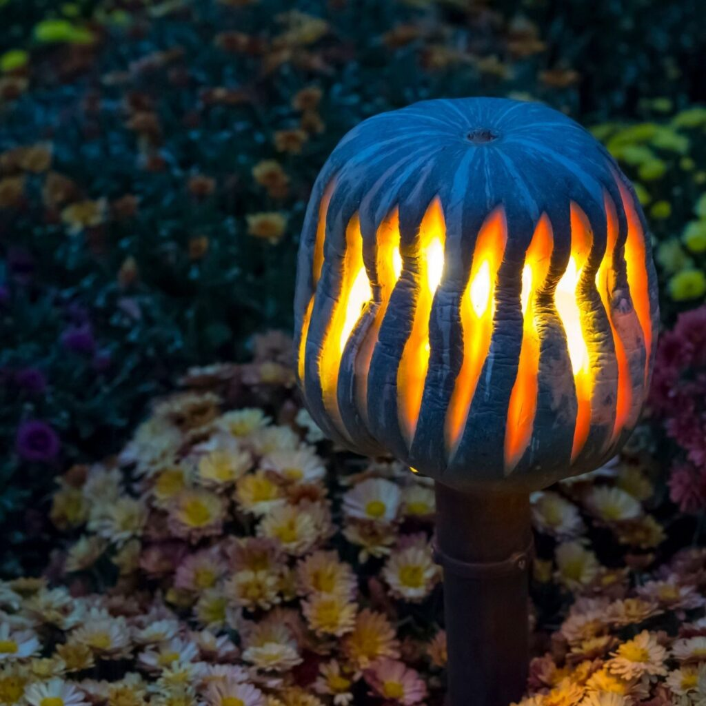 Decorating with Gourds and Pumpkins.  Making a lantern out of squash, pumpkins, or gourds