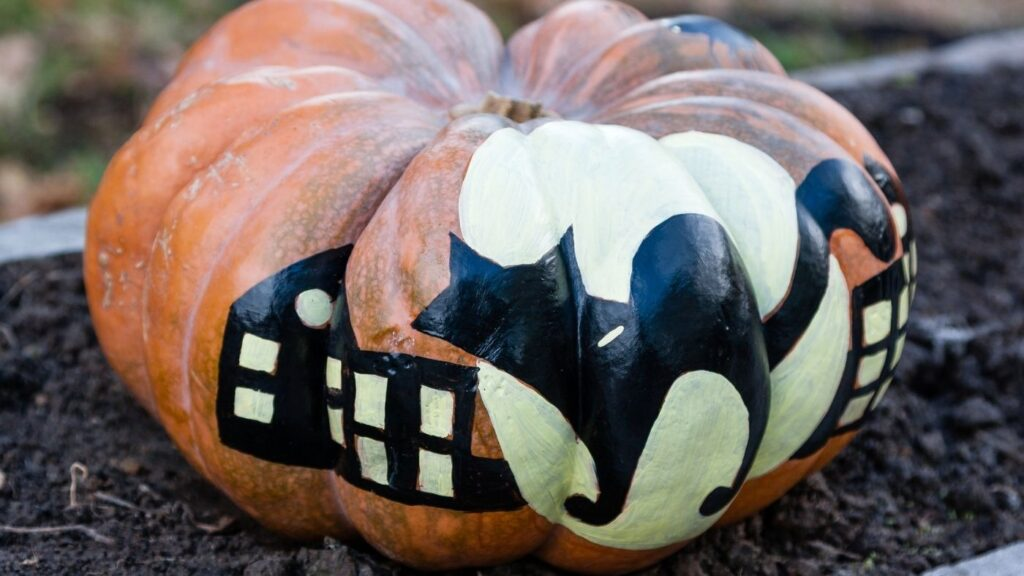 Hand painted pumpkin with a black cat.