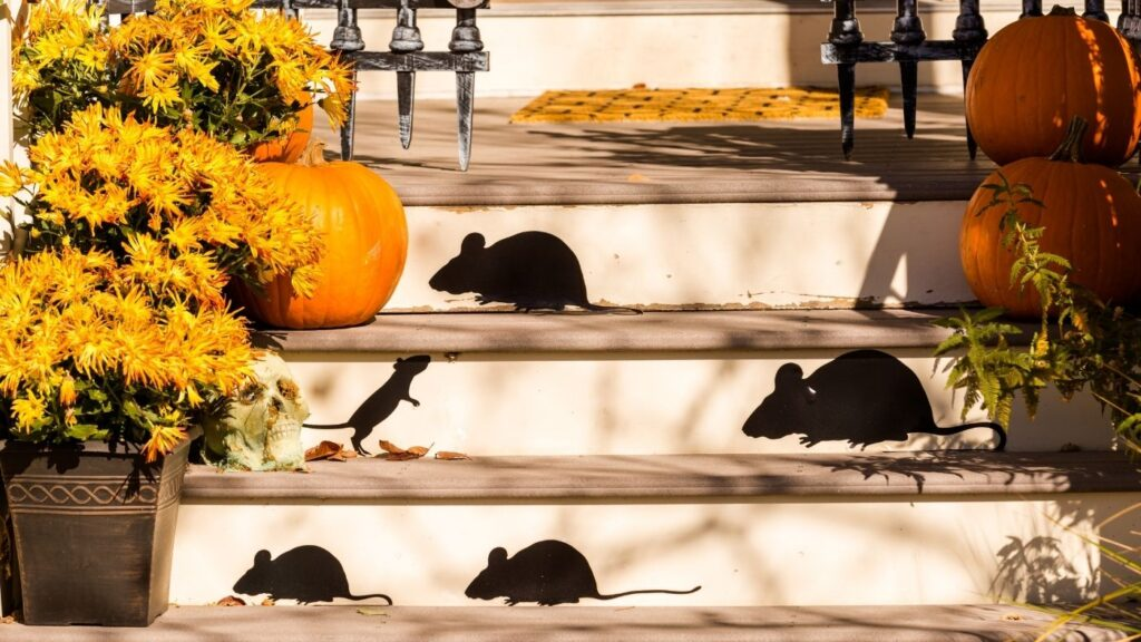 Halloween Decor Ideas - Shadows of Rats on the stairs made out of laminated black paper