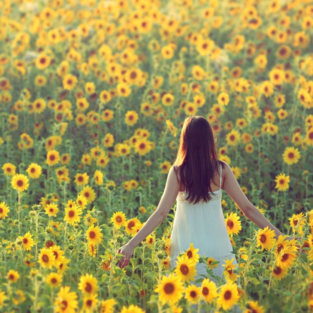Simple Living Ideas - Woman in a field of sunflowers