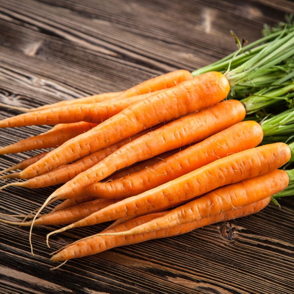 Beets Carrot Orange Juice Recipe - Fresh carrots with carrot tops